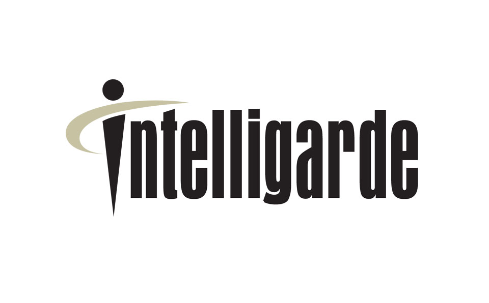 Intelligarde_Logo_Detail