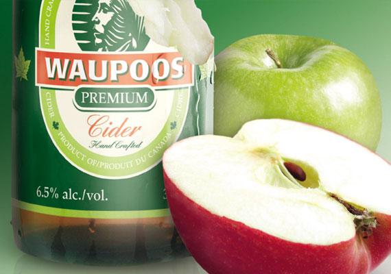 Waupoos Cider Branding