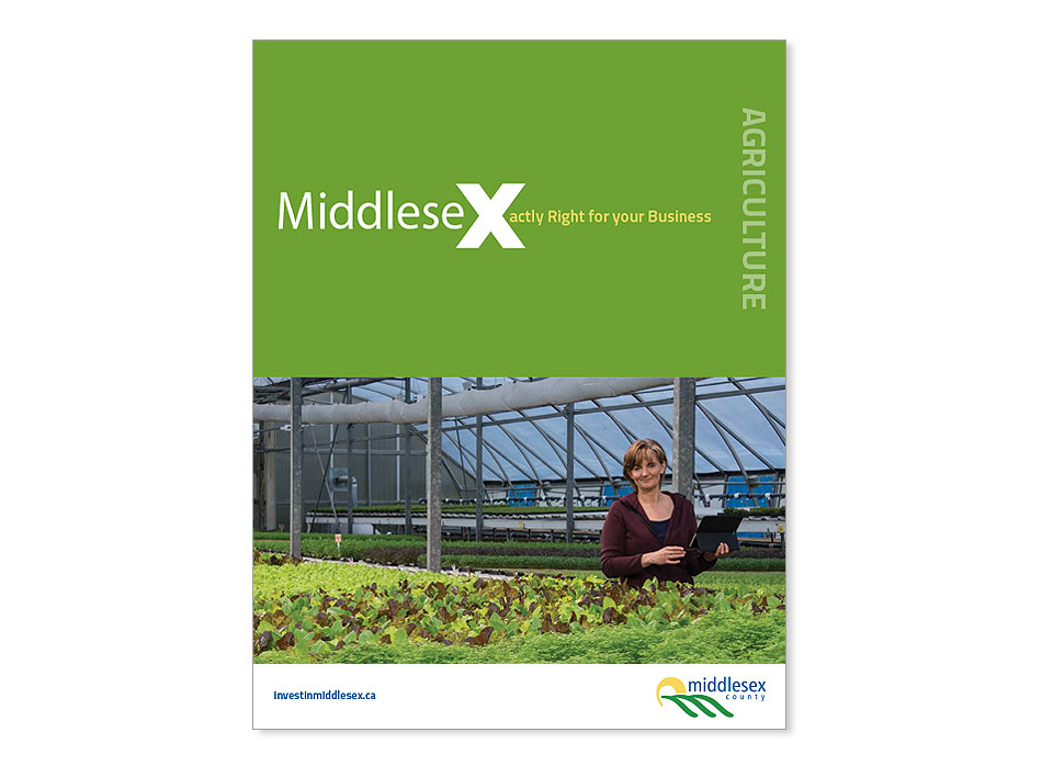 MDX_cover4